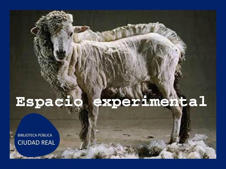 Espacio experimental - PRODUCCIONES 099